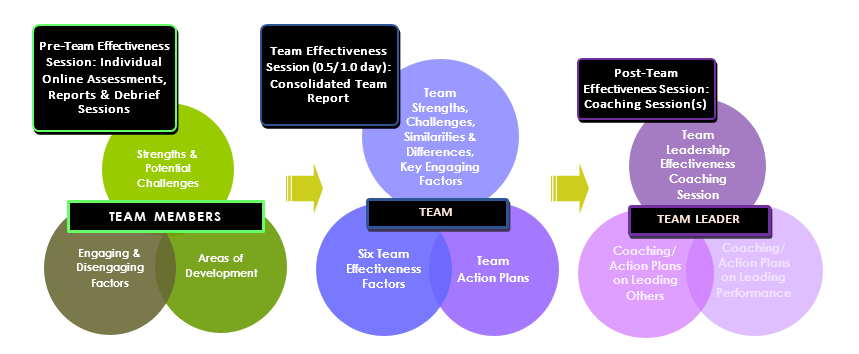 ensure team effectiveness Team effectiveness (also referred to as group effectiveness) is the capacity a team has to accomplish the goals or objectives administered by an authorized personnel or the organization.